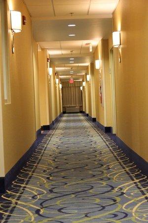Holiday Inn Express & Suites Dickson City-Scranton : 2nd floor hall
