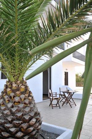 Hotel Porto Diakofti: Ground floor terrace