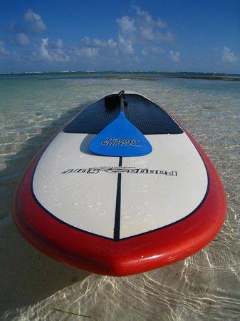 UnderToe Mexico SUP Adventures : Highest Quality Equipment