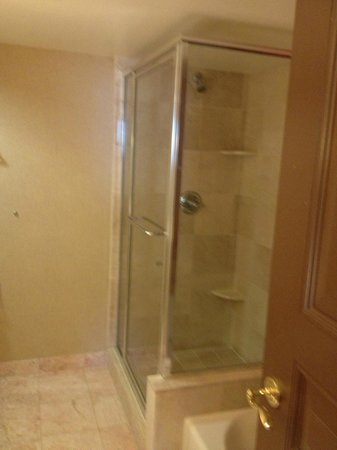 Paris Las Vegas: shower- bathroom comes with tub also