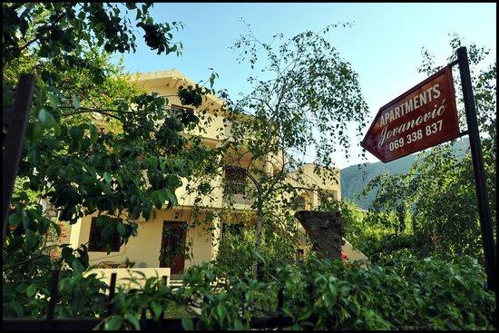 Apartments Jovanovic: Hotel