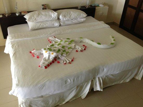 Club Med Kani: un petit crocodile sur le lit ...
