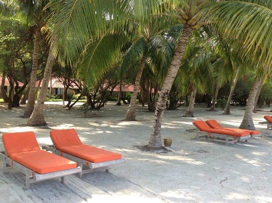 Club Med Kani: En face des chambres (5 mètres à peine)