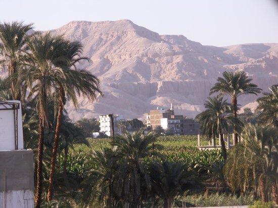 Senmut Luxor B&B: Nur ein Blick von der Terrasse