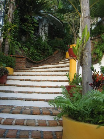 La Terraza Inn: Stairs to Rooms