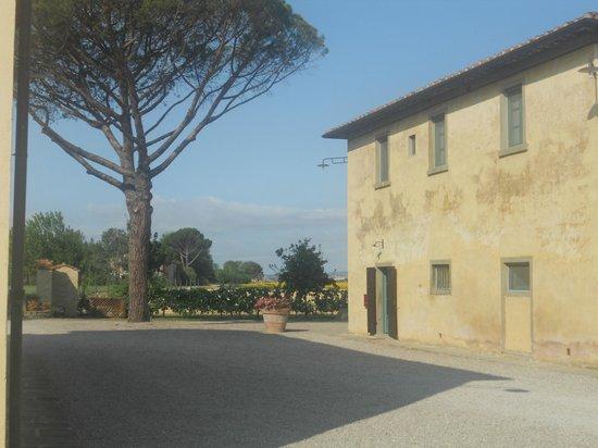 Cortona Resort - Le Terre dei Cavalieri: la struttura all'arrivo
