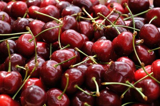 Agriturismo ai Ciliegi: Mare di ciliegie
