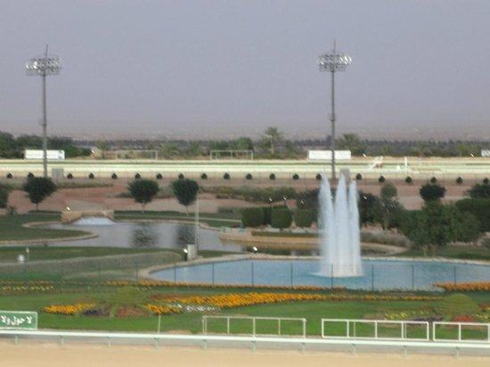 Equestrian Club of Riyadh: beautiful view