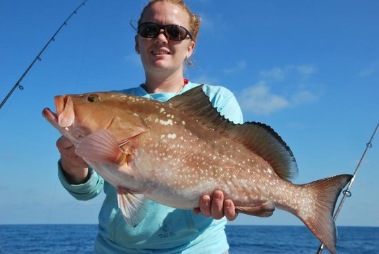 Kingdom Business Fishing Charters