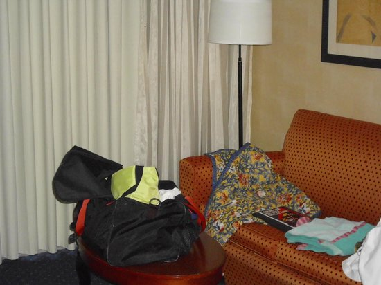 Courtyard by Marriott St. Louis Westport Plaza: pull out & quite end of hall loved it