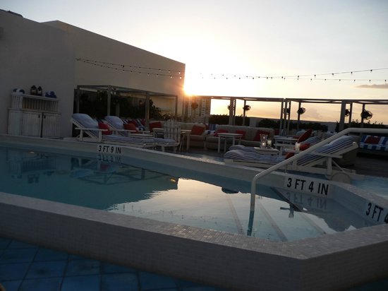 Soho Beach House : Plunge pool at roof top bar