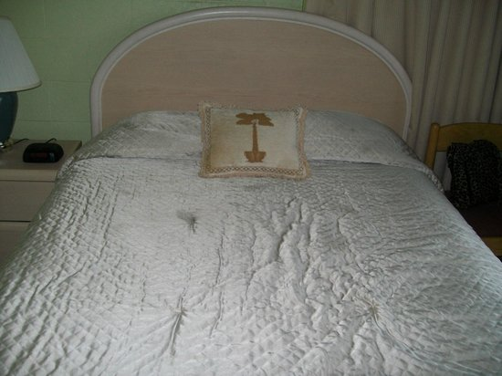 Tides Inn: Bed