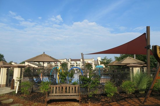 BEST WESTERN PREMIER Eden Resort & Suites: Pool area