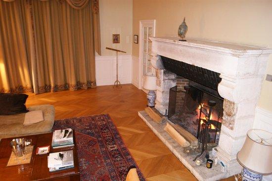 Domaine De La Brugere : cheminée salon