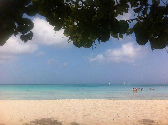 Hotel Playa Costa Verde: beautiful beach!!snorkeling a must!