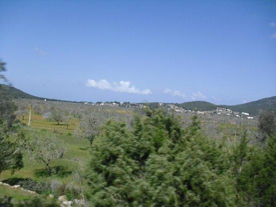Cami Pla de Corona