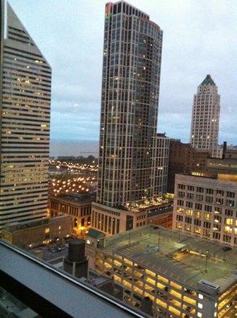 ذا ويت شيكاجو - أدبل تري باي هيلتون هوتل: view from roof 