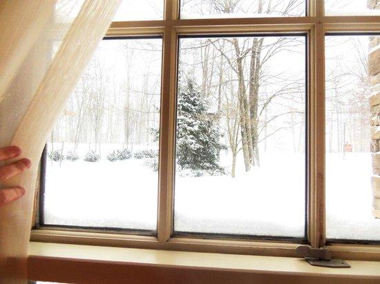 Carnegie Inn & Spa: Snowmageddon