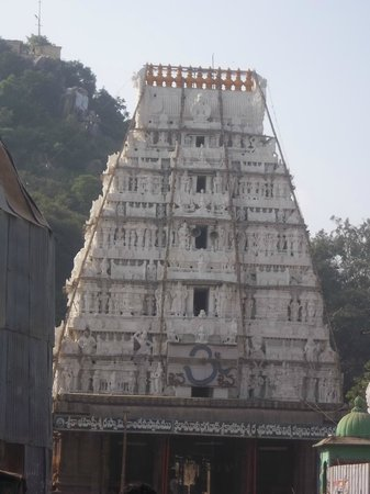 Srikalahasti, India: Temple top
