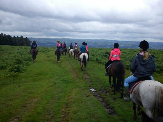 Tregoyd Mountain Riders: back of the convoy once again
