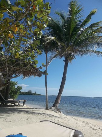 Barefoot Cay: A few steps off our porch