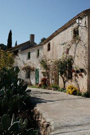 Lecrin Valley, Spain: Calle de Cónchar