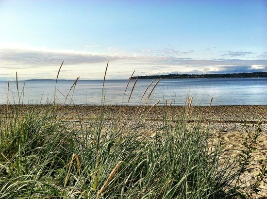Great Day At The Bay Picture Of Birch Bay State Park Birch Bay