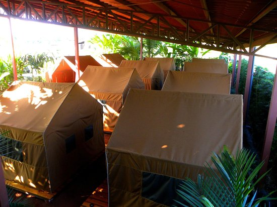 Arenal Backpackers Resort: View of camping area from the private room