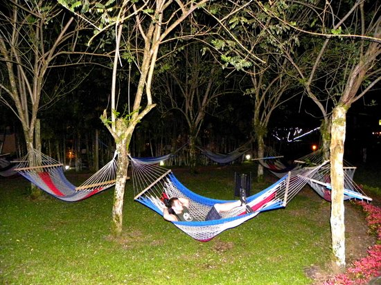 Arenal Backpackers Resort: Hammock area
