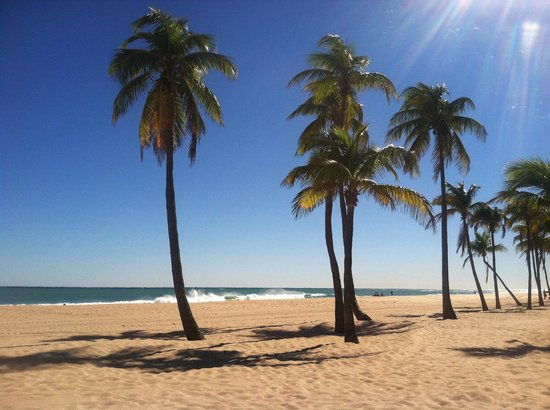 Las Olas Beach Fort Lauderdale 2018 All You Need To Know Before Go With Photos Tripadvisor