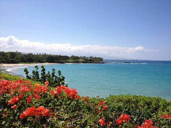 Mauna Kea Beach Hotel, Autograph Collection: Beach view