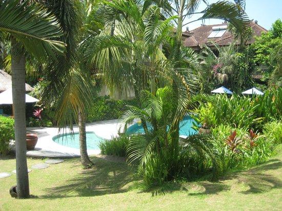 Vision Villa Resort: Pool