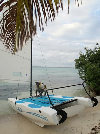 Hatchet Caye Resort: Rasta preparing a cat for us