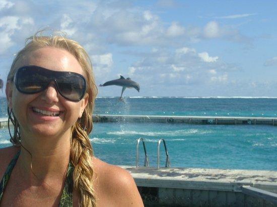 Dolphin Island : ao fundo o salto.