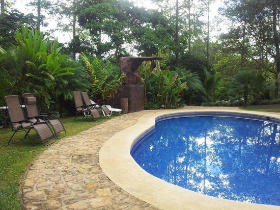 Hotel Villas Escondidas: The pool area