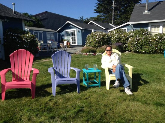 Bodega Harbor Inn: great spot to look at the ocean