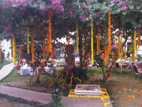 Hotel Udai Kothi: The janoi mandap