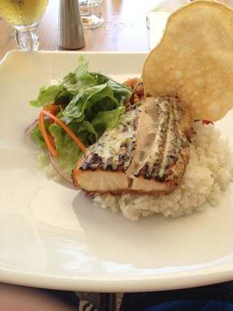 Tedder and Woodroffe: barramundi
