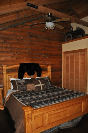 Great Branson Cabins: Sportsman room-Bear Crossing