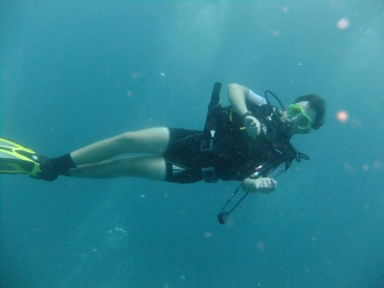 Image result for pictures of scuba diving in warm water