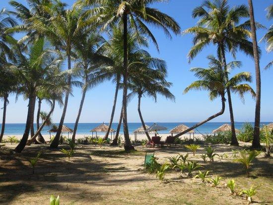 The Emerald Sea Resort: The beach
