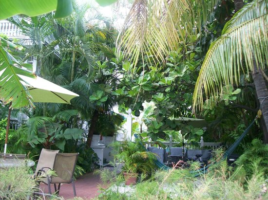 Southernmost Point Guest House: the yard