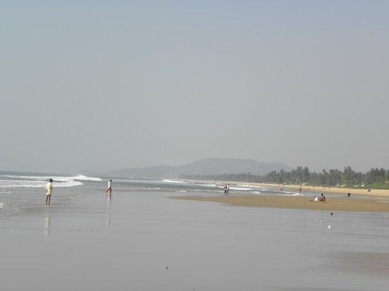 Gokarna Beach: beach