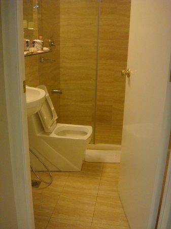 بي إس إيه توين تاورز كوندوتل: glassy toilet