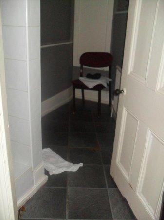 Ravna Gora Hotel: la stanza della doccia ( con le mutande di un ospite)