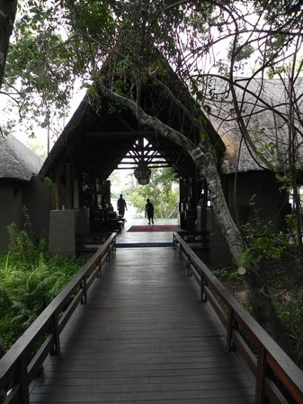 Royal Chundu Luxury Zambezi Lodges: As you walk into Main Lodge