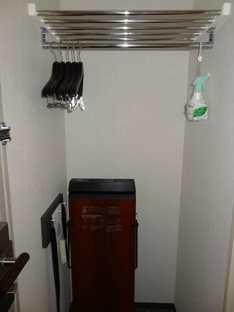 Daiwa Roynet Hotel Kyoto-Hachijoguchi: Hanging area just besides door with trouser press