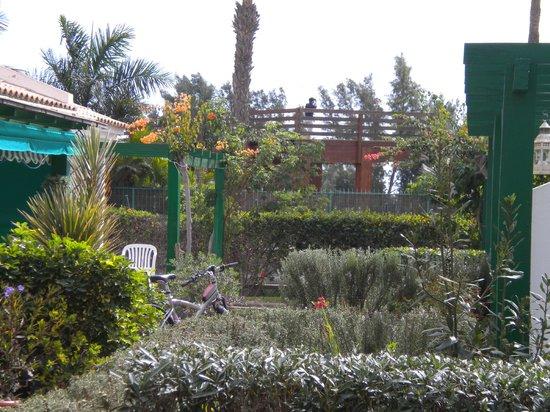 Campo Golf Bungalows: vue de notre terrasse, jardins fleuris