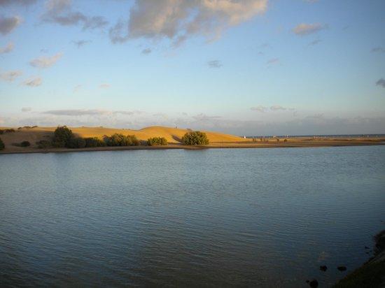 Campo Golf Bungalows : l'oasis, réserve naturelle