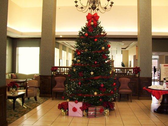 Hilton Garden Inn Valdosta: lobby